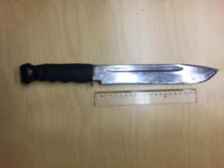 Skaraborgs Tingsrätt - knivlagen
