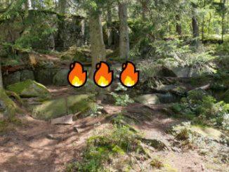 Brandrisk skog Skövde Billingen