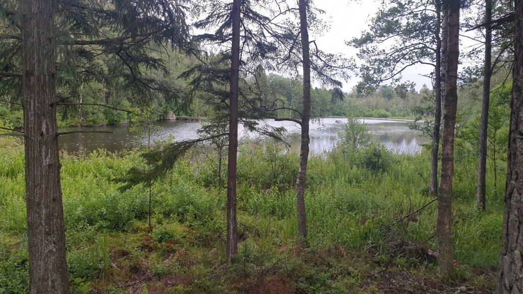 Åsbotorpsjön längs med Trollstigen på Billingen i Skövde