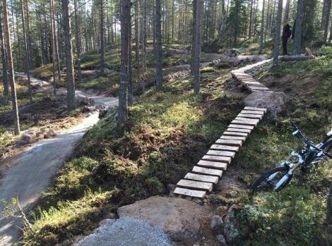 Teknikbana för mountainbike, Skövde, Billingen