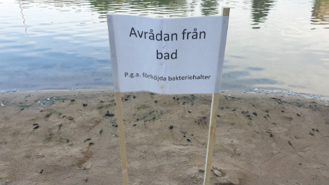 Boulognersjön i Skövde.